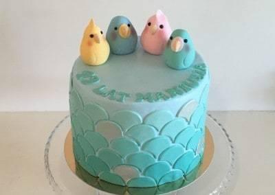 tort papugi