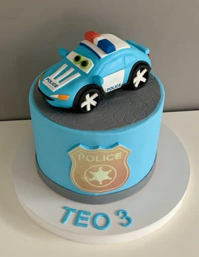 tort policja