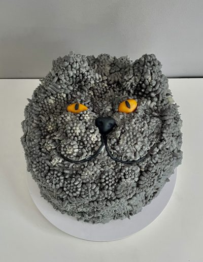 tort kot brytyjski
